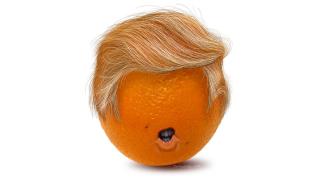 Trump-orange-1000x563