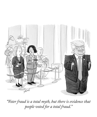 Vote_fraud_cartoon