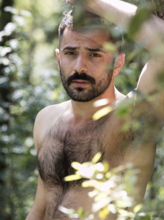 Hairy chest 4